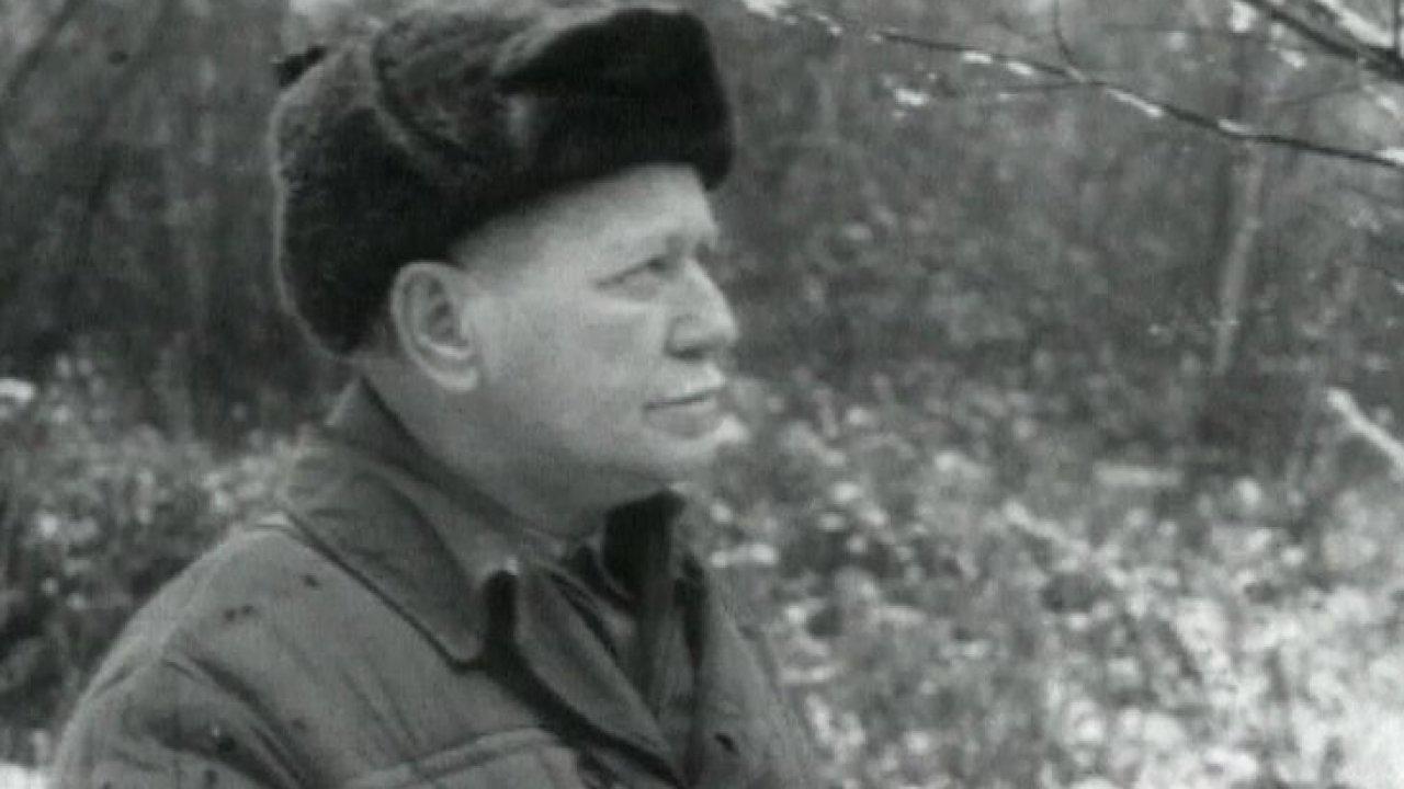 Черное солнце Михаила Шолохова